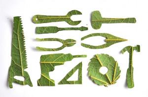 leaftools4