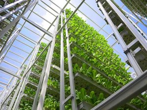 Skygreens-Vertical-Farm1