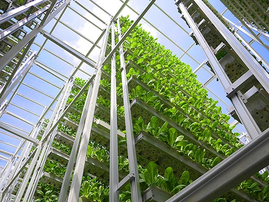 """Classroom Design With Technology In Mind ~ Growing """"up urban vertical farming greenhome nyc"""